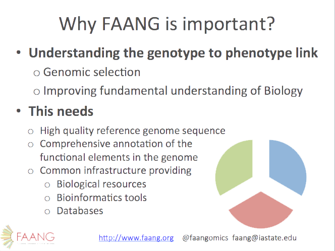 Functional Annotation of Animal Genomes (FAANG) - Project Description